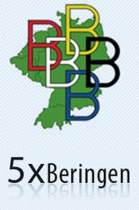 Logo 5 x Beringen
